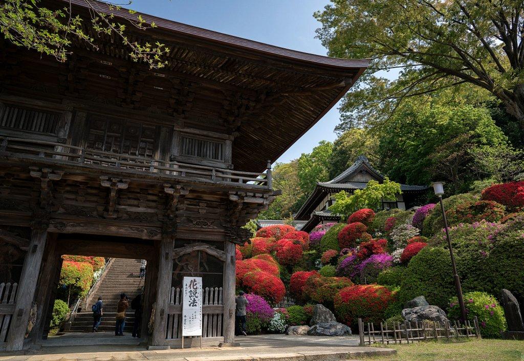 Gate at Togakuin (the Azalea Temple)